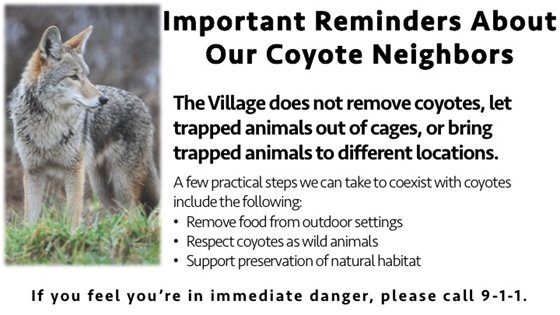 Reminders about Coyotes