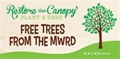 Free Trees from MWRD